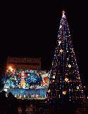 Главная новогодняя елка страны